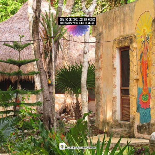 Las Friegas - Yoga, Meditación, Holístico, Bienestar Natural, Botiquín de bolsillo, Productos veganos, Friegas de Alcohol, Organic Yoga Mexico Hotel, Akumal, Quintana Roo